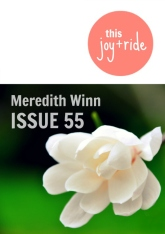 meredith winn_cover